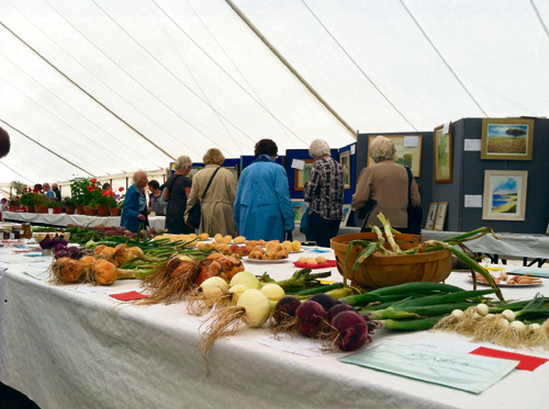 frenchay flower show 2014